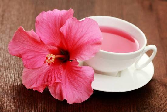 Хибискус чај: корист и штета за жените и мажите. Критика на употребата на црвено чај од судански роза