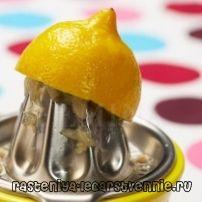 Колко полезна лимонов сок, противопоказания