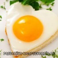 Храни, които съдържат протеин