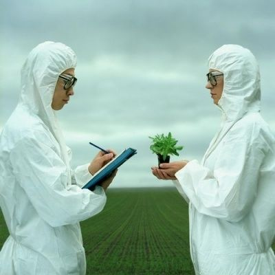 ГМО: списъка на най-опасните продукти и компании