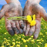 Как да се чисти ръце, след като през лятото на работа