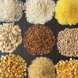 Кои зърнени култури е добро за здравето на човека