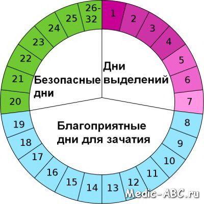 Възможно ли е да се забременее на дванадесетия ден от цикъла