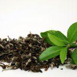Полезните свойства на чай за тялото