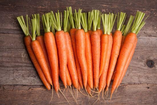 Корисни својства и можните штети на сирова нафта, варени моркови и сок од морков