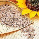Ползи и вреди на слънчогледови семки