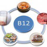 Използването на витамин В12 за човешкото тяло