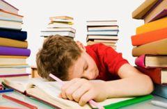режим точни студент ден