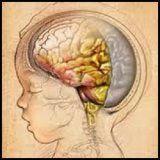 Cauzele de meningită la copii