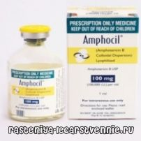 Антифунгални антибиотици: третман на системски микози Amfotsil
