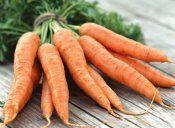 Препораките за одгледување на моркови