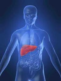 necroza hepatica