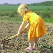 Труд и вештини на детето самоуправа
