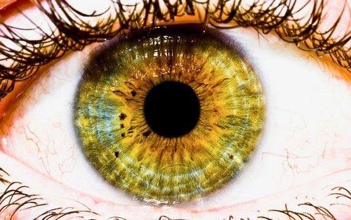 Враќање визија за Следен метод Фокус